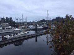 View of the Marina from the grounds, Quarterdeck Inn  6555 Hardy Bay Rd, Port Hardy, British Col