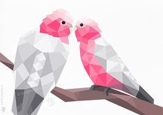 Hey, I found this really awesome Etsy listing at https://www.etsy.com/listing/258108009/galah-pair-pink-galah-birds-love-birds