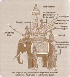 Infographic ช้างศึกในการทำยุทธหัตถี