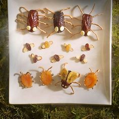 This swarm of edible insects may look too repulsive to eat, but their various parts -- nutritious goodies, such as dates, raisins, banana chips, and apricots -- make them delightfully sweet.                 For each bug, start with a dried fruit body as noted, then add various parts by pushing them into place. If needed, use a toothpick or paring knife to first make small holes or slits.                 Bug-eyed Spider - Body: whole date; Legs: chow mein noodles; Eyes: white chocolate chips…