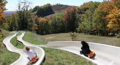 The Mountain Coaster In Michigan That Will Take You On A Ride Of A Lifetime