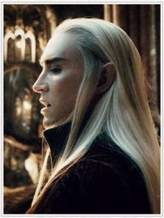 Thranduil --- the most elegant & beautiful, sexiest platinum blonde ever....