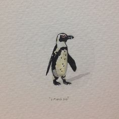 Day 61 : Took my clients to Boulders Beach today. The past week has made me realize (once again) how lucky I am to live in one of the most magical places on earth. 25 x 15 mm. #365paintingsforants #miniature #watercolour #penguin #capetown