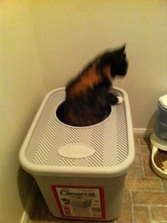I was getting tired of our 3 cats kicking litter all over the place. I bought this Clevercat litter box and it has significantly reduced the amount of litter they enjoy spreading around. Diy Litter Box, Litter Box Enclosure, Cat Litter Cabinet, Dog Nose, Cat Pee, Angry Cat, Cat Care Tips, Cat Behavior, Cat Health