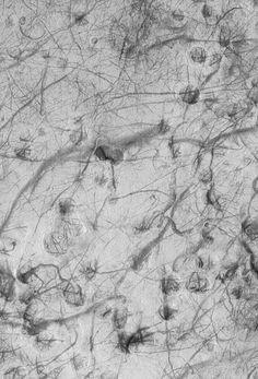 Mars 3_ESP_023797_0910_Martian_Dust_Devils-full.jpg (1628×2400)