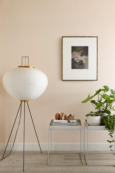Apricot wall paint, paintings on the wall, green houseplants, wooden elephant figures . Room Colors, Wall Colors, House Colors, Bedroom Colours, Peach Living Rooms, Home Living Room, Peach Walls, Pink Walls, Peach Bedroom