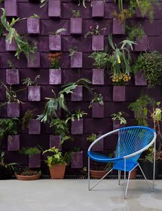 not sure about the color, but the idea of a painted, planted, cinder block wall is interesting. Perhaps a half wall to keep dogs from tearing down the fence. Voila no more redneck backyard! Decorative Cinder Blocks, Murs Violets, Cinder Block Walls, Vertical Garden Wall, Walled Garden, Purple Garden, Purple Walls, Concrete Blocks, Garden Projects