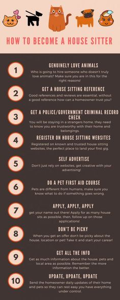 23 Best Pet sitters and sitting in USA images in 2019