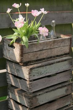 pink tulips in wooden crates