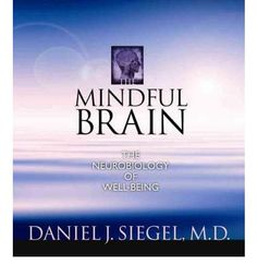 """""""Siegel effectively links the two broad domains of mindfulness and neuroscience""""...Eugene F."""