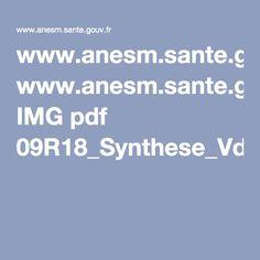 www.anesm.sante.gouv.fr IMG pdf 09R18_Synthese_Vdef.pdf
