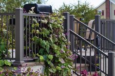 Vinyl Fence Railing Decking in Medina Brunswick Wadsworth Orrville Wooster Deck Railings, Fence, Outdoor Structures, Garden, Plants, Garten, Lawn And Garden, Deck Balusters, Gardens
