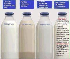 What best to drink vs Coconut milk, Hazelnut milk, Almond milk & Cow's milk Coconut Milk Nutrition, Pasta Nutrition, Health And Nutrition, Health Tips, Health Facts, Health Benefits, True Health, Health Care, Milk Facts