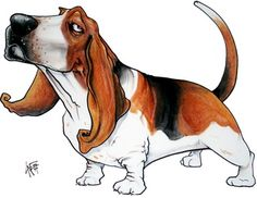 Basset Hound Studio Caricature