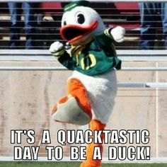 I know a few Oregon Ducks fans at my school. Alabama College Football, Oregon Ducks Football, Notre Dame Football, Ohio State Football, Oklahoma Sooners, American Football, Florida State University, Florida State Seminoles, University College
