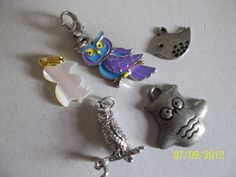 http://tophatter.com/auctions/6659  Adorable bird charms!!!!