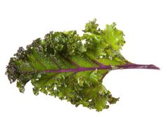 8 food trends to expect in 2013,  interesting read, kale chips and more.  ~Mel @ RaisedUrbanGardens.com