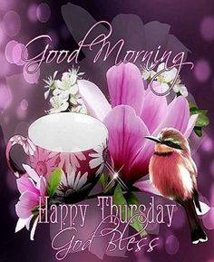 Good Morning, Happy Thursday, God Bless You good morning thursday thursday quotes good morning quotes hello thursday good… Nice Good Morning Images, Good Morning Happy Thursday, Good Morning Sister, Good Morning Thursday, Good Morning Greetings, Good Morning Good Night, Morning Pictures, Morning Pics, Morning Quotes