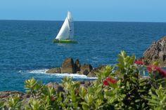 Tauranga, New Zealand Mount Maunganui, Walking Paths, South Pacific, Boating, Caption, New Zealand, Sailing, To Go, Fishing