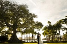 Real LDE Moment: Samantha & James' Palm Beach Wedding | A Lauren Daversa Event | Shot By Ambrosio Photography | Venue Henry Morrison Flagler Museum | Decor by Xquisite Events | Moment Husband and wife stand beside the Giant Kapok Tree outside of the Royal Poinciana Chapel after the ceremony.