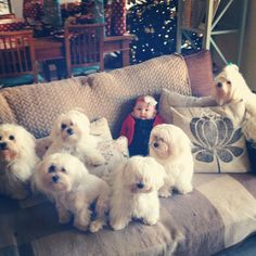 Anna Saccone @Anna Saccone Instagram photos   Webstagram. Hanging out with her brothers and sisters
