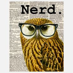 My design inspiration: The Nerd Owl Canvas on Fab.