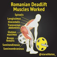 One of the best exercises for hitting the glutes and hamstrings is the Romanian deadlift. This deadlift removes the knees from the equation, so the emphasis is all on the hamstrings and glutes. �Leg exercises� are an overall category of weight lifting tha Leg Exercises, Best Leg Workout, Butt Workout, Gym Workouts, Cellulite Workout, Cellulite Exercises, Weightlifting, Powerlifting, Sport