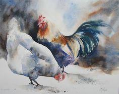Poule et coq - Aquarelle