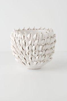 ++ Curled Petal Pot