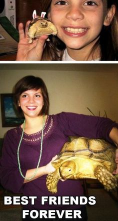 It's nice to see some one get a herp (in this case a tortoise) for a pet and not release it simply because it got big.