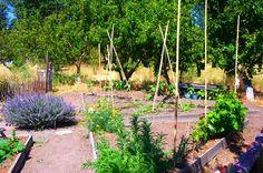 2014 BBY - Sonoma Garden Park