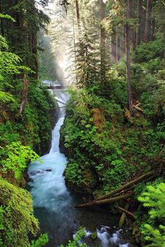 This is Sol Duc falls in NW Washington state, outside of Port Angeles.