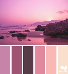 setting tones - color palette from Design Seeds Colour Pallette, Color Palate, Colour Schemes, Color Combos, Color Patterns, Monochromatic Color Scheme, Color Concept, Design Seeds, World Of Color
