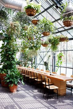 """Check out our internet site for even more info on """"greenhouse plans"""". It is actually an outstanding spot to read more. Greenhouse Restaurant, Greenhouse Cafe, Outdoor Restaurant, Greenhouse Plans, Dark Interiors, Shop Interiors, Colorful Interiors, Architecture Restaurant, Restaurant Design"""
