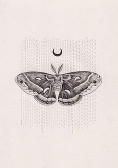 Punctured Artefact. Symbolism blog. Moth tattoo design. Ink trends. Leather