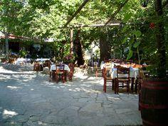 grecian venues   Greek Restaurants Phoenix . Behind the locations around the city.