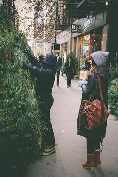 THE HOLBROOKS PICK A CHRISTMAS TREE