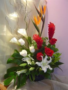 STARLET - Bird of paradise, ginger,roses, calla lillies, casablanca, pompoms, hypericum, and curly willow