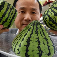 Link About It: Japan's Very Expensive Luxury Fruit