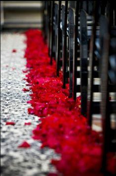 Red black and white wedding aisle decor       Keywords: #redblack #jevelweddingplanning Follow Us: www.jevelweddingplanning.com  www.facebook.com/jevelweddingplanning/