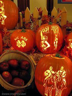 9 Best Notre Dame Images Halloween Gourds Halloween Pumpkin