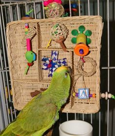 Pet bird diy ideas... Lots of ideas using wicker baskets.