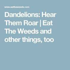 Dandelions: Hear Them Roar | Eat The Weeds and other things, too