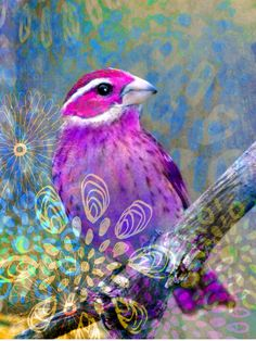 Changes  by Robin Mead bird, watercolor, mixed media, altered art, digital art,