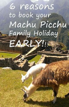 Why book a family Machu Picchu Holiday early? this is a super useful #perutravel guide, including some top tips to maximise your visit to #MachuPicchu