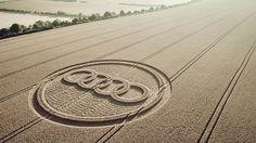 Cream of the crop | Destination: Audi - xixi