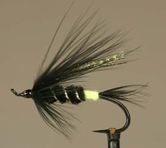 Green butted skunk variant with a bit of crystal flash in the wing. Oregon Fly Fishing, Fly Fishing Lures, Trout Fishing, Fishing Tips, Fly Fishing Magazine, Fishing Places, Fly Tying Desk, Hair Wings, Steelhead Flies
