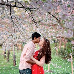A fun & young couple in love takes their engagement pictures with the Cherry Blossoms in Washington, DC.