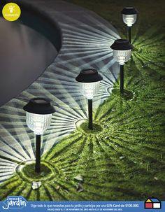 Es una hermosa iluminacion para el jardin#Farol #solar #Jardin
