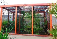 Outdoor chameleon cage Pet Care, Reptiles, Aquarium, Pergola, Chameleons, Outdoor Structures, Geckos, Animal Care, Pets